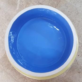 blue roi2